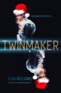 TwinmakerSantaHat