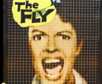 """On The Fly"" Part Two: Disintegration"
