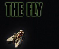 """""""On The Fly"""" Part Four: Redux"""